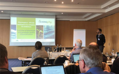 Coniphy in the 19th Reinhardsbrunn-symposium on modern fungicides and anti-fungal compounds
